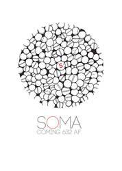 The Soma Effect by jayblue9