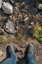 Hiking Shoes by TeddyMarkov