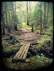 The path by Watizit