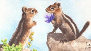 Chipmunk Love by Toradh