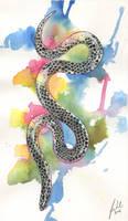 Rainbow Snake by Toradh