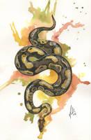 Python by Toradh