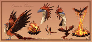 Common Phoenix by Toradh