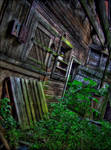 The Nature of Decay by wb-skinner