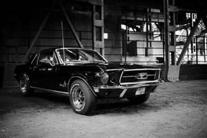 Mustang by OkamIGrey