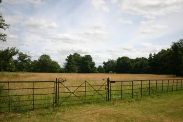 Field stock by Twimperology