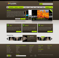 FlashXML Web Design by dFEVER