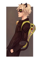 Chat Noir by Buurd