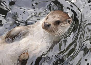 Eurasian otter by Renum63