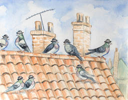 Pigeon Gents by SaskiaDeKorte