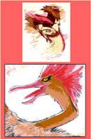 021 to 022:  Cooler Birds by HedgehogBeeblebrox