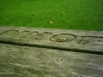 bench by razinger