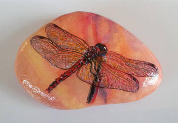 Dragonfly Rock by Giselle-M