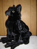 a black griffon by griffon-lady
