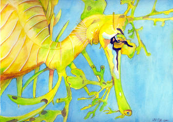Leafy Sea Dragon - Watercolor by SurfTiki