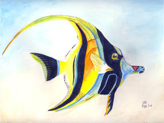 Moorish Idol - Kihikihi - Watercolor by SurfTiki