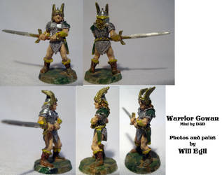 Warrior Cowan from D n' D - Old paint by SurfTiki