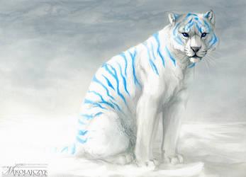 Tiger. by Safiru