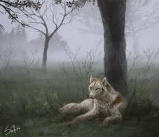 Rest. by Safiru