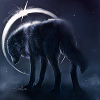 Silent. by Safiru