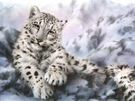 snow leopard by o0oSeikou0o0