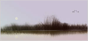 Am See by gfoc