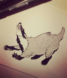 Badger by Pikku-Piru