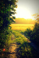 road to paradise by iamme2234