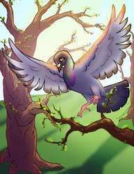 Pigeon by Rococokara
