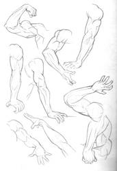 Sketch Dump: Arms by Bambs79