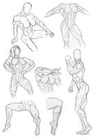 Anatomy Practice Legs and Torsos by Bambs79