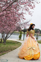 Broadway Belle Beauty and the Beast Ballgown by aimeekitty