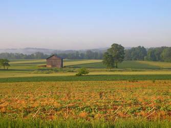 Morning Fields by UtharWynn