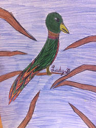 Bird drawing by LadyG7