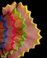 colors by FrancoBorsiWildLife