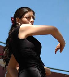 flamenco 14 by kikkums