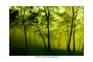 silent morning :2 by sigpras