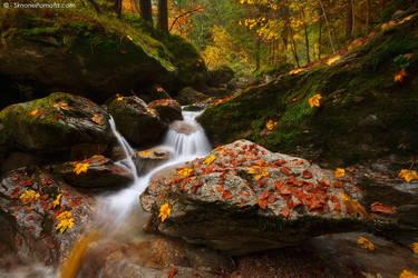 Autumn in Valgoglio by SimonePomata