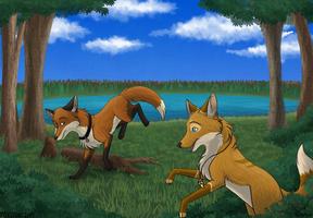 Follow the Fox by foxstory
