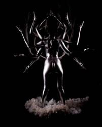 silver by Persephonebleeds