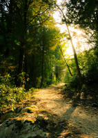 Hiking 2 by PinkVillain