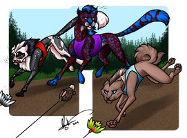Lure Coursing - Insentive by Caterang8
