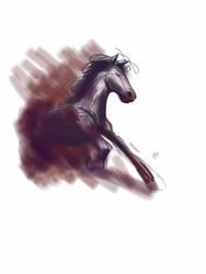 Wild horse paperas by A-Muriel