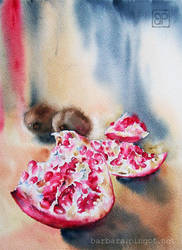 Still life with pomegranates by stokrotas