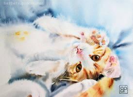 Sam Urok/Just charm by stokrotas
