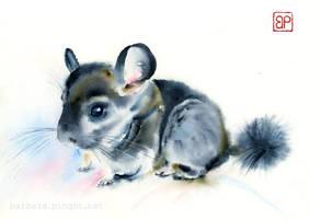 Alvin by stokrotas