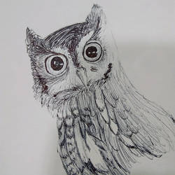 Day 2 Ink-Tober Owl by TheWildThingsRoam