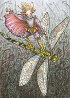 Dragonfly Rider, ACEO ATC by stevenshipman