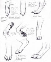 Wolf Paws by AdothWolf