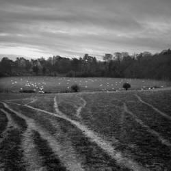 Shoreham by Mark-Fisher-Photos